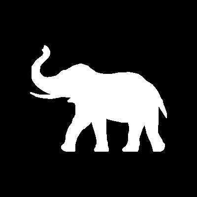 1R2com Contenus Mémoire d'éléphant